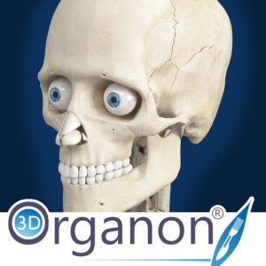 3D Organon Anatomy - Skeleton, Bones, and Ligaments Mac OS X