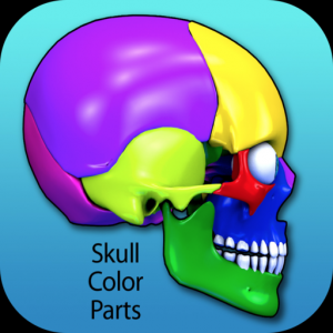 Skull Color Parts Mac OS X